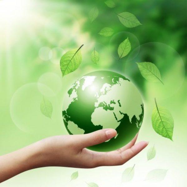 כך נשמור על העולם- אקולוגיה ואיכות הסביבה